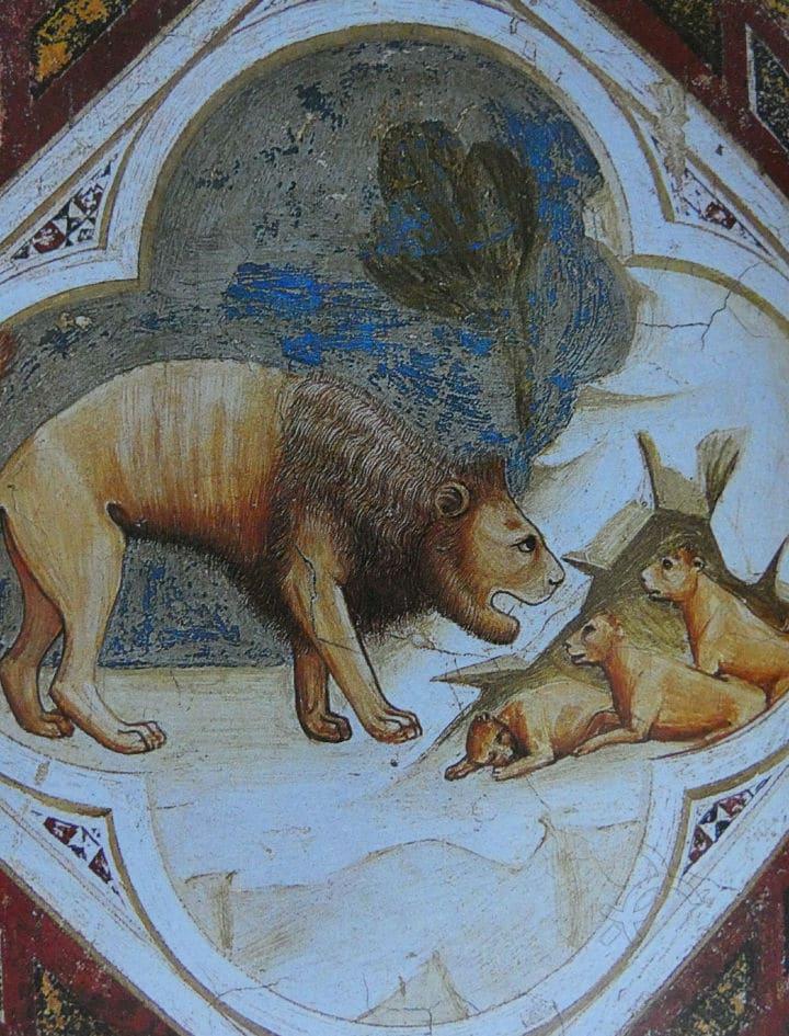 chiara frugoni uomini e animali nel medioevo arte leone con cuccioli
