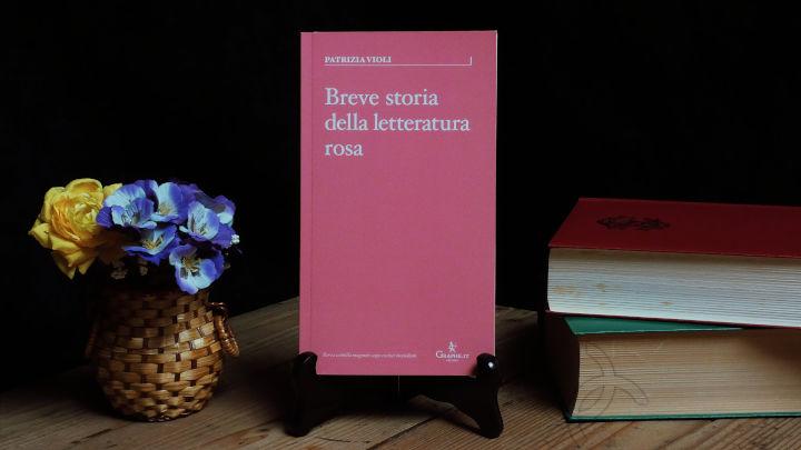 breve storia della letteratura rosa patrizia violi